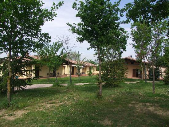 La Collina dei Ciliegi Agriturismo: Esterni appartamenti immersi nel verde