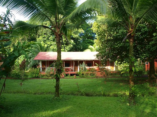 Samoa Lodge & Resort Tortuguero: notre lodge