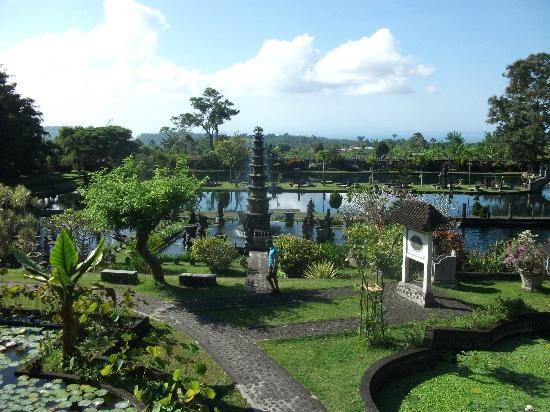 Tirta Ayu Hotel & Restaurant: View in the morning from Restaurant of Hotel Tirta Ayu