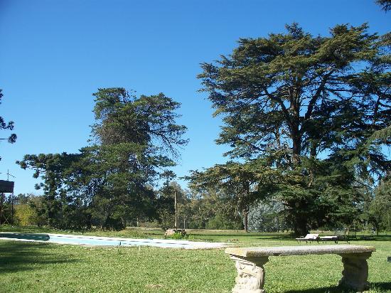 Estancia Santa Rita: Vista de la pileta desde la reposera junto a ella