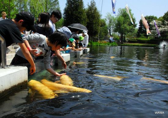 Hanyu, Japan: さいたま水族館