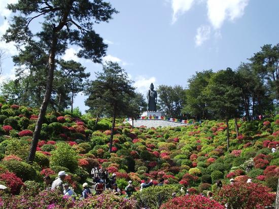 Ome, Japan: つつじの中からの平和観音立像