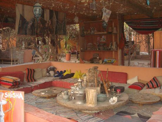 Bedouin Garden Village: arabic setting