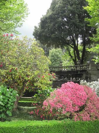 Villa Lante: fiori