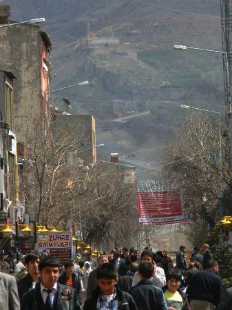 Hotel Ararat: dogubeyazit la via principale