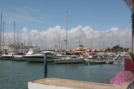 Marina de Vilamoura: Vilamoura marina