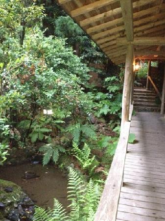 Lodge Yaedake Sanso : pretty garden and waterway running next to the main walkway