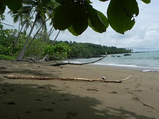 Copa de Arbol Beach and Rainforest Resort: on the beach