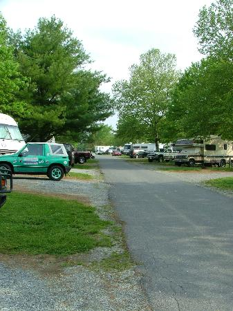 Circle M RV & Camping Resort: Campground