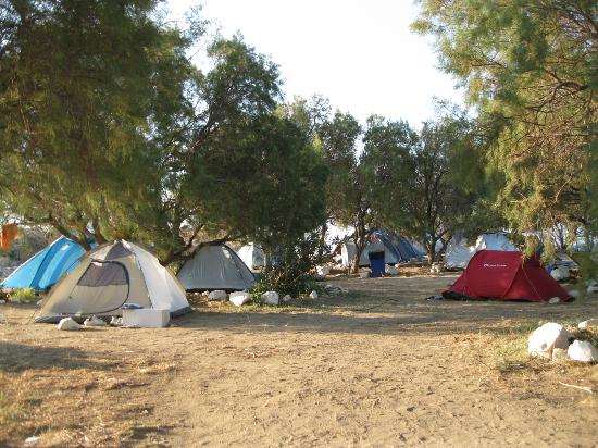 Paraga Beach Hostel & Camping: The quiet end; but less shade and is hot