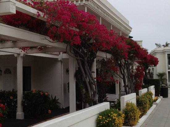 Glorietta Bay Inn: Hotel rooms
