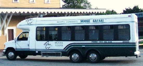 Mwv Moose Tours