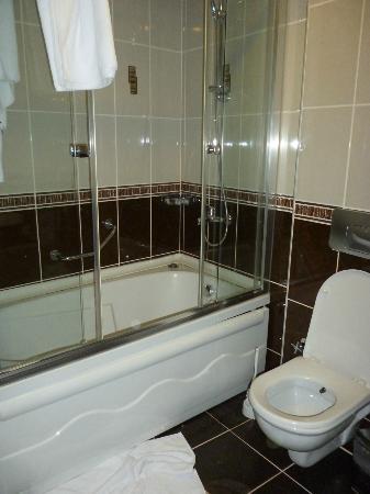 Tashkonak Studio Suites: il bagno della suite