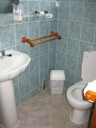 Burleigh House: Sink and Toilet