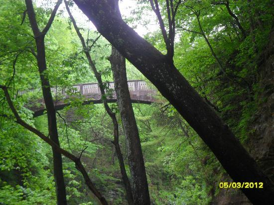 Matthiessen State Park: bridge