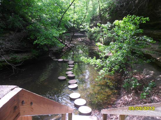 Matthiessen State Park: stepping stones