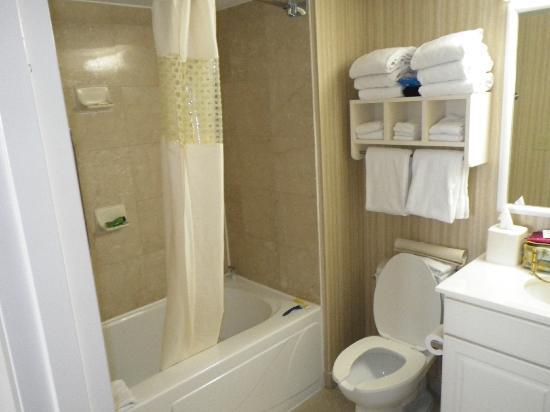 Hampton Inn & Suites Myrtle Beach/Oceanfront: Bathroom from King Room