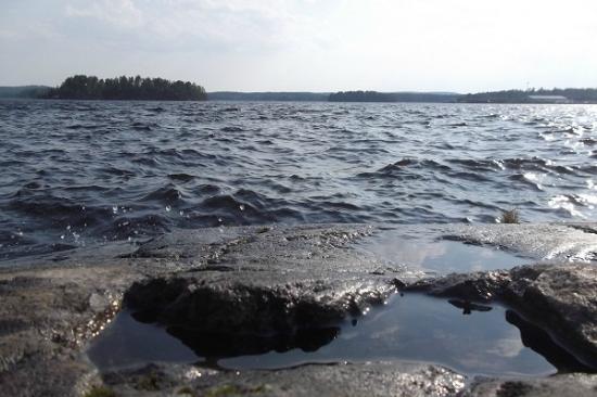 Lake In Vainolanniemi Kuva Vainolanniemi Kuopio Tripadvisor