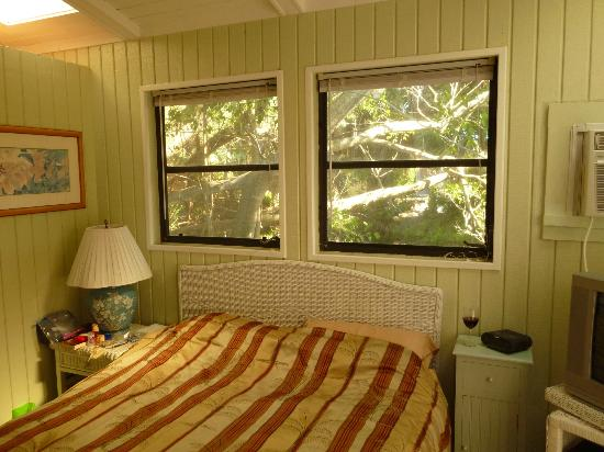 Periwinkle Cottages of Sanibel: Our room & pond view