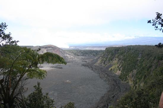 Kilauea Iki Trail: Overlooking the crater