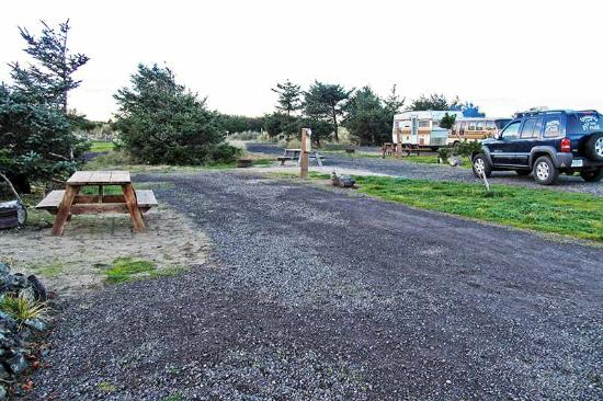 Oceanside Beachfront RV Resort: Large, level, clean gravel sites