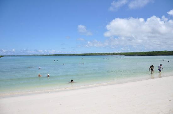 Tortuga Bay The Calm Waters Part Good For Swimming And