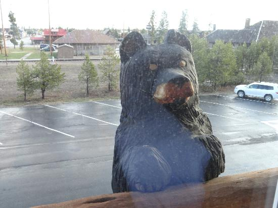 Kelly Inn West Yellowstone: Bear looking in our room