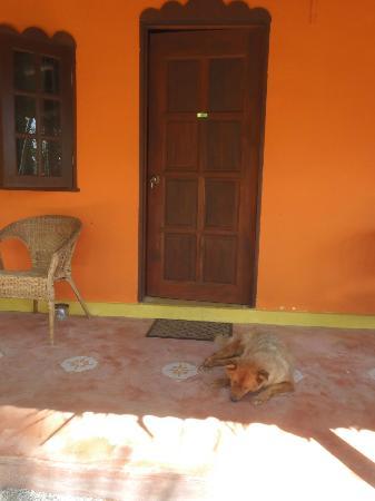 Pondok Keladi Guest House : notre chambre