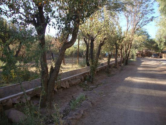Hostal El Anexo: vista da entrada