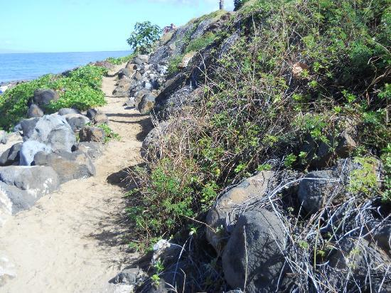Aston at the Maui Banyan: This is atrail that leads to another Kamole beach. There are a total of three.
