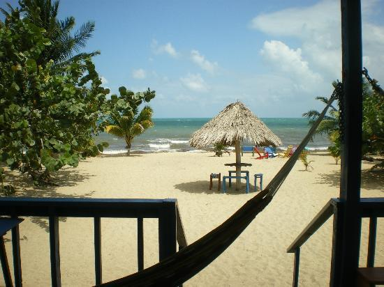 All Seasons Guest House : Who would not want to wake up to this view every morning.