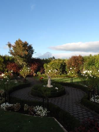 Villa Heights Bed and Breakfast: View of Mt Taranaki from garden