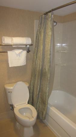 Courtyard Chapel Hill: Basic bathroom