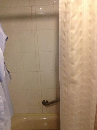 Hotel Miramar: stains