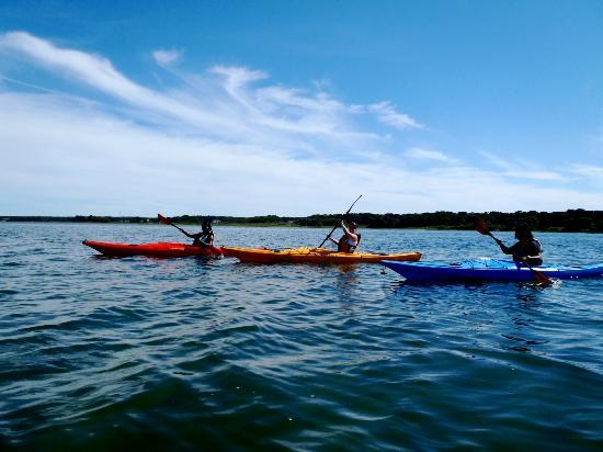 Martha's Vineyard Eco Adventures: on the water