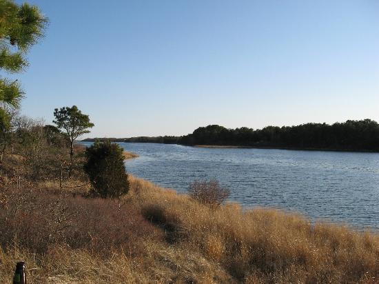 Martha's Vineyard Eco Adventures: view of the pond