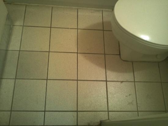 Days Inn & Suites Needles: Gross floor