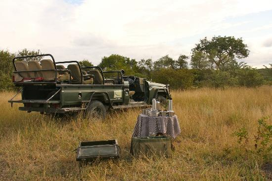 andBeyond Ngala Safari Lodge : Truck Stop