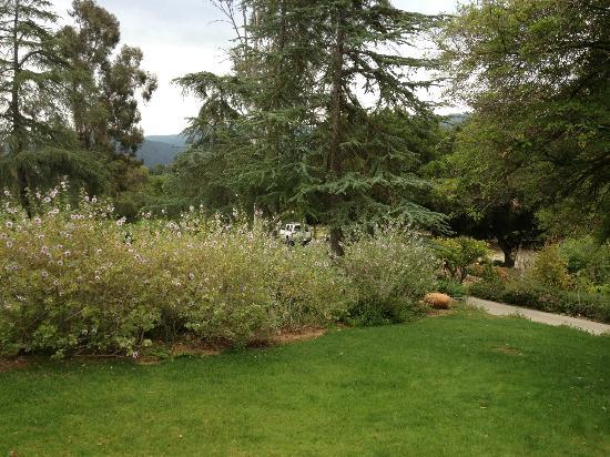 Ojai Retreat: Pretty grounds