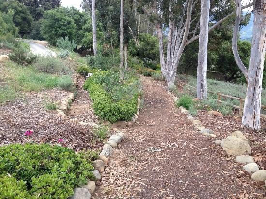Ojai Retreat: Nature Path