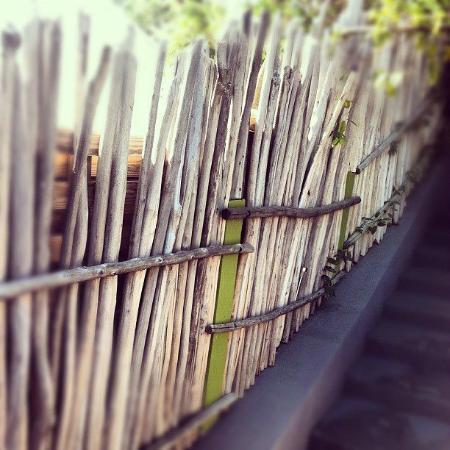 Karibuni Lodge: Extérieur