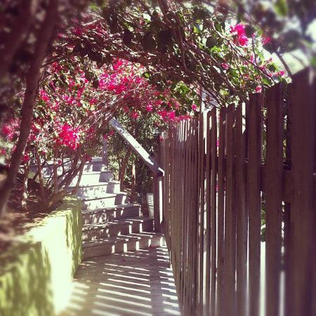 Karibuni Lodge: Accès à la piscine