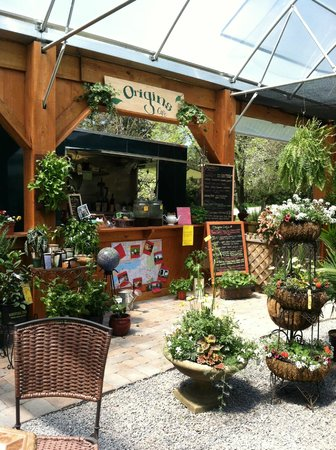 Origins Cafe at Carefree Gardens