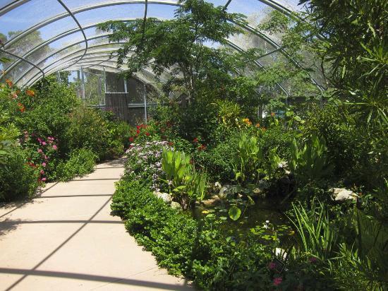 Butterfly House Picture Of Naples Botanical Garden Naples Tripadvisor
