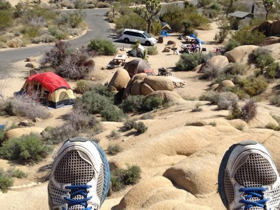Jumbo Rocks Campground: looking down on sites 22,23,24