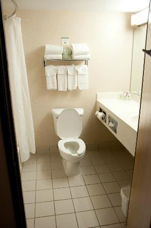 Country Inn & Suites By Carlson, Lansing: Bathroom