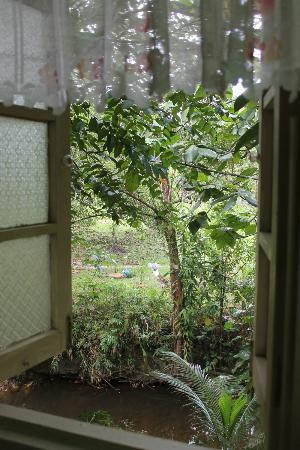 The Kebun 사진