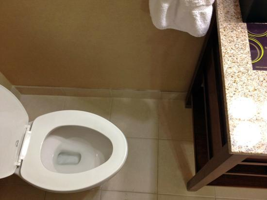 Sheraton Omaha Hotel: Showing short distance between toilet and bathroom cabinet