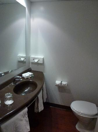 Ibis Rotorua Hotel (Rotorua, New Zealand)