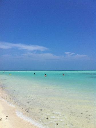 Kondoi Beach : クリームソーダ色の海